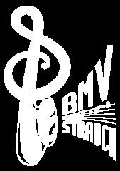 logoBMVorg